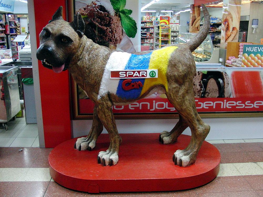 Can: auf Türkisch, Herz, Leben, Geist. Canis auf lateinisch Hund. Der Hund, das Wappentier von Gran Canaria. 2014
