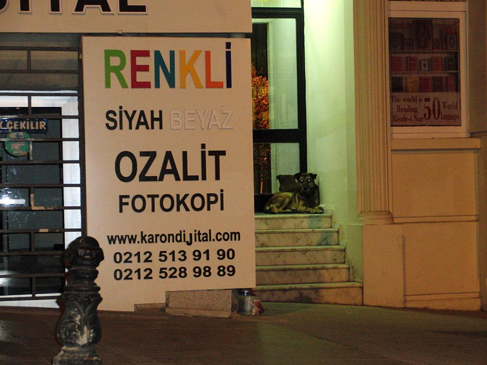Sultanahmet, İstanbul, 2014