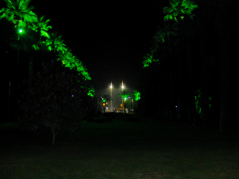 Allee im İzmir Kültürpark
