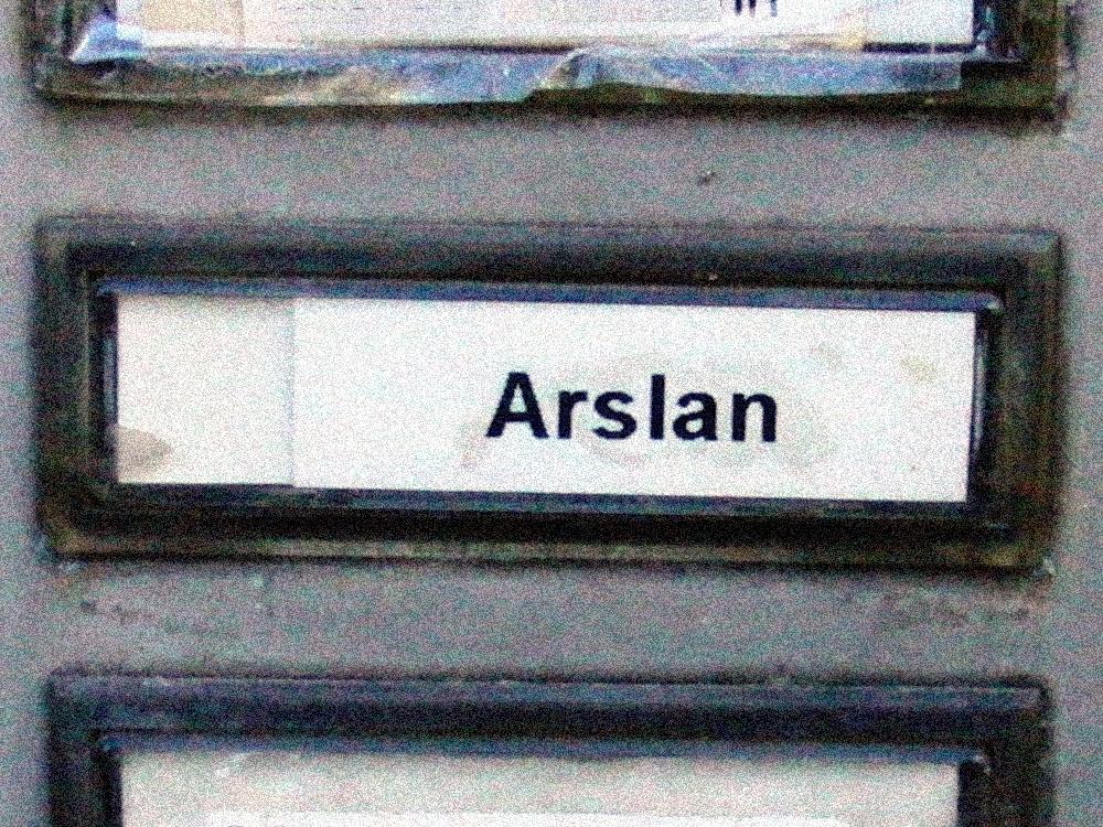 Arslan, der Löwe, Berlin-Schöneberg 2015