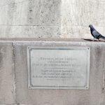 Taube am Zafer Anıtı (Siegesdenkmal), Ankara